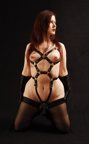 Leder-Harness